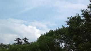 200731.jpg