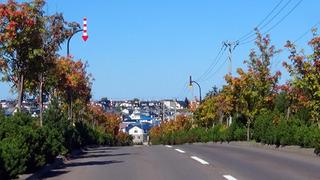 200915.jpg