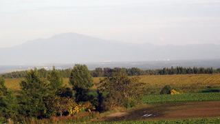 201011.jpg